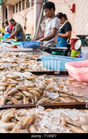 Phuket, Thailand 21st January 2019: Prawns for sale at the town market. The market is open early morning every day. - Stock Image
