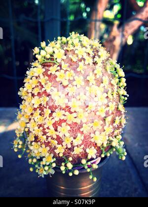 Easter egg decorated with flowers - Stock Image