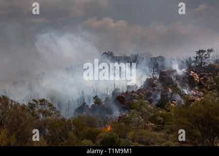 Wildfire burning, East McDonnell Ranges, Alice Springs, Northern Territory, Australia - Stock Image