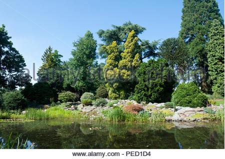 Arboretum de Dreijen, Wageningen, The Netherlands - Stock Image