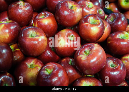 Horizontal shot of healthy and shine red apples at the Farmer's market - Stock Image