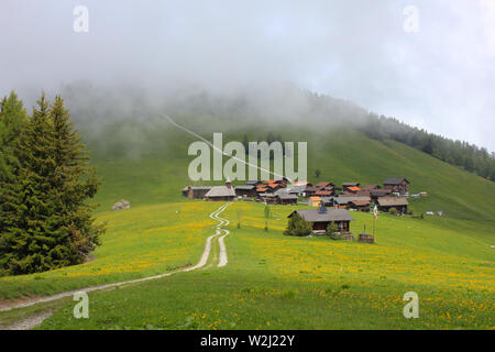 Green meadow and village Obermutten on a foggy summer day. - Stock Image