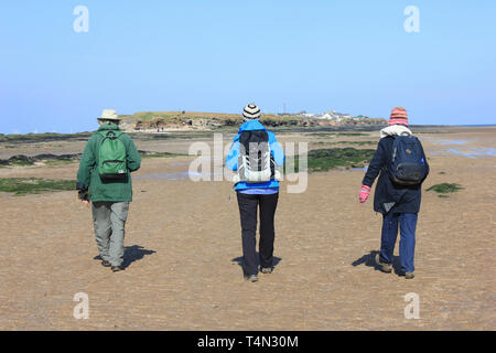 Walkers approaching Middle Eye - part of three islands within the Hilbre Island archipelago, Dee Estuary, UK - Stock Image