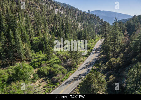 Narrow highway leads through a forested valley in the mountains of southern California. - Stock Image