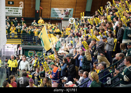 Fans cheering at UVM men's ice hockey game, Burlington, VT, USA - Stock Image