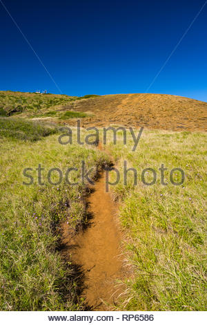 Dirt trail through short grass, Ihi'ihilauakea Crater, Koko Head, Koko Head District Park, Hawaii Kai, Oahu, Hawaii, USA - Stock Image
