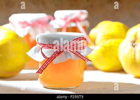 Homemade quince jelly in glass jars with quinces on a linen tablecloth in bright sunshine in front of an old stone wall. - Stock Image