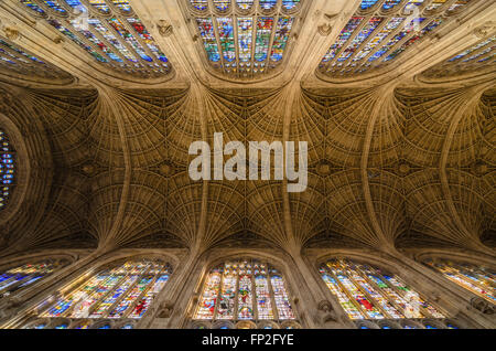 The ornate ceiling of Kings College Chapel, Kings College, University of Cambridge, England, United Kingdom. - Stock Image