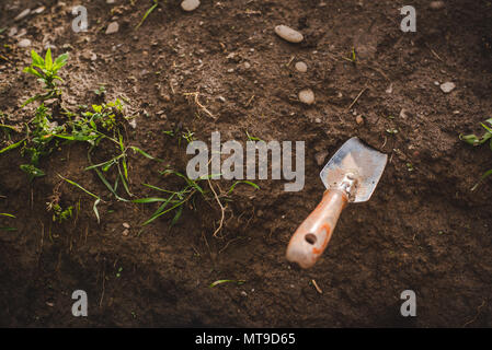 A spade is stuck in the soil for gardening. - Stock Image