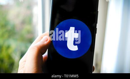 Tumblr app on smartphone hand - Stock Image