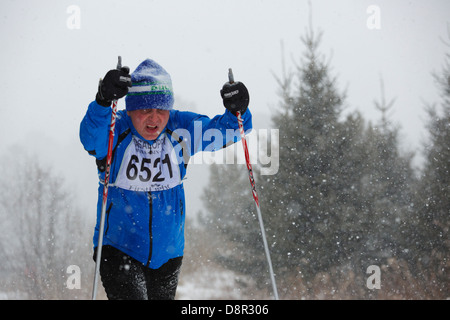 Heavy snow falls as Wally Avello skis in the Mora Vasaloppet 42 km classic category on February 10, 2013 near Mora, - Stock Image