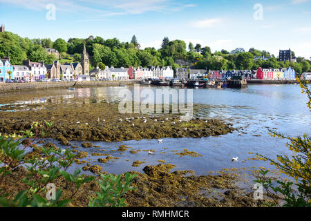 Town view across harbour, Tobermory, Isle of Bute, Inner Hebrides, Argyll and Bute, Scotland, United Kingdom - Stock Image