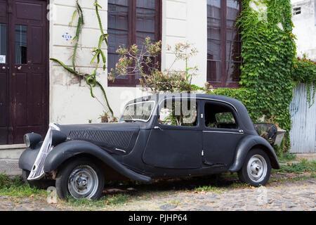 Uruguay, Colonia del Sacramento, plantation inside a front-wheel drive, collector car recycled into a garden car - Stock Image