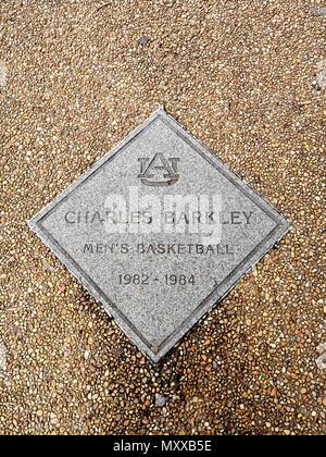 Charles Barkley public monument or commemorative plaque along the sidewalk of fame for outstanding Auburn University athletes in Auburn Alabama, USA. - Stock Image