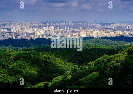 Central Sao Paulo from the rainforest of the Serra da Cantareira State Park, Brazil - Stock Image