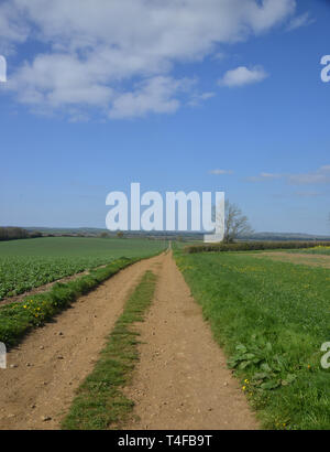 View of a bridleway near the Warwickshire village of Wormleighton which leads towards the Oxford Canal - Stock Image