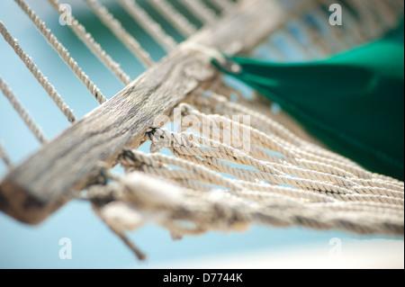 Beach Hammock Macro - Stock Image