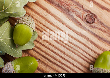 Concept of Green oak leaves and acorns on the background a rustic textured wood. Copy space for your text, top view. - Stock Image