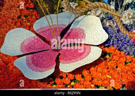 White Pink Red Rose petal floral lily design close up Orange Daisey purple violet orchids orange roses - Stock Image
