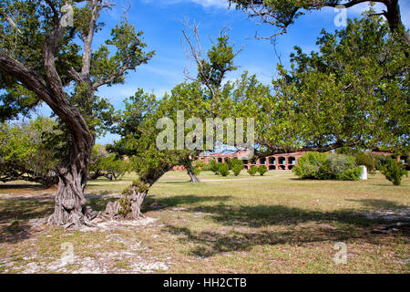 Dry Tortugas National Park - Lighthouse - Fort Jefferson Interior Grounds - Stock Image