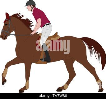 young horseman riding elegant horse color illustration - vector - Stock Image