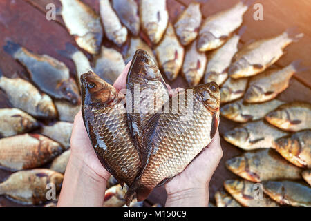 Three are fresh caught river fishes in hands. Fresh caught carp fish on wood. Catching freshwater fish on wood background. - Stock Image