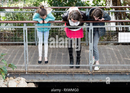 Three young girls leaning over a rail and gazing intently downwards. - Stock Image
