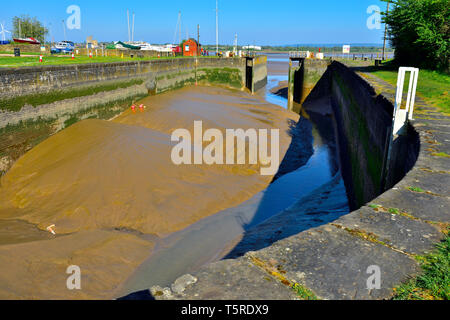 Lydney Harbour off Severn Estuary, low tide with lock gates open exposing mud silting harbour - Stock Image