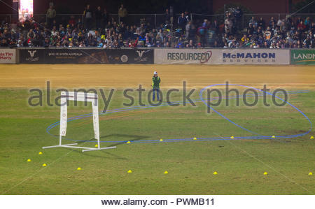 Time exposure of drone racing at the FPV FAI World Cup during the Royal Adelaide Show in South Australia, Australia. - Stock Image