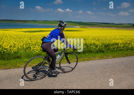 Mature female cyclist riding through quiet lanes in Denmark. - Stock Image