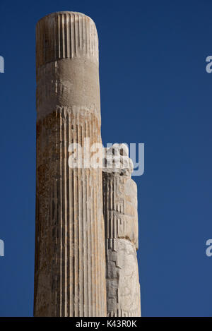Carved Achaemenid columns at the archaeological site of Persepolis, Iran. Ruins of the Apadana Palace - Stock Image