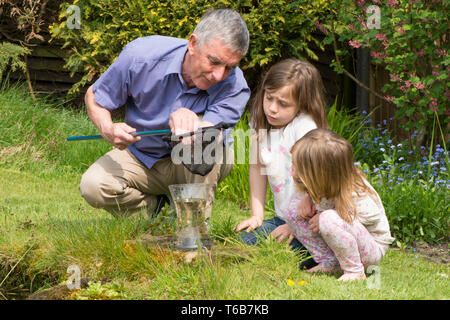 grandfather pond dipping with two grandchildren, teaching them about, and showing them, wildlife, young girls, 3 and 8 years old. net and jar - Stock Image