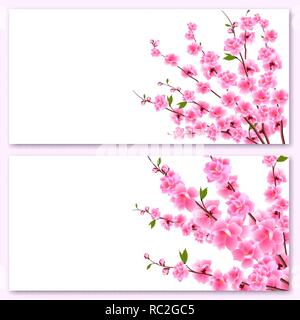 Sakura - two cards. Decorative flowers of cherry with buds on the branches, a bouquet. Can be used for invitations, banners, posters. illustration - Stock Image