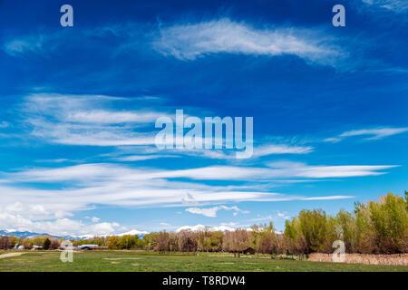 Beautiful blue sky with cirrus clouds; snow capped Rocky Mountains on horizon; Vandaveer Ranch; Salida; Colorado; USA - Stock Image