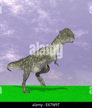 Dinosaurier Stegoceras validum   / dinosaur  Stegoceras validum - Stock Image