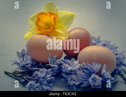 Easter Eggs and spring flowers - Stock Image