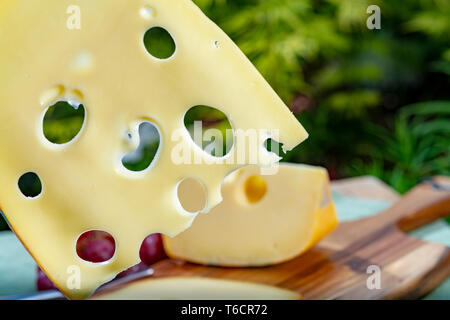 Dutch Maasdam hard cheese with holes, piece and sliced, served with grapes outdoor in green garden - Stock Image