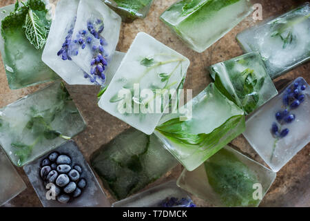 Herb Ice Cubes - Stock Image