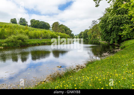 River Wharfe, near Hebden, Yorkshire. - Stock Image