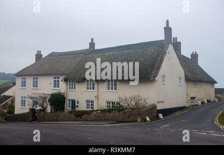 Old quaint thatched cottages in Charmouth in West Dorset UK - Stock Image