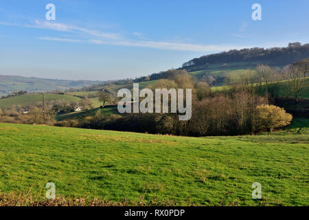 Devon countryside view with rolling green hills, trees and houses in distance, near Cadbury, Bickleigh, UK - Stock Image