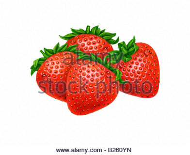 Strawberries Four - Stock Image