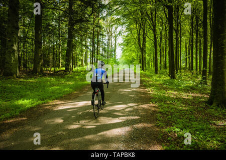 Mature female cyclist riding through woodland in Denmark. - Stock Image