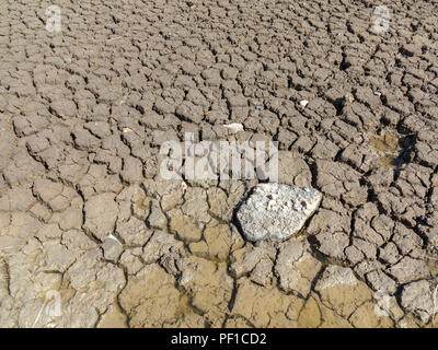 Looking down on a small area of dried, cracked mud - Stock Image