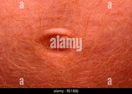 Male belly button close up macro - Stock Image