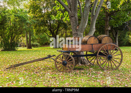 Antique horse-drawn wagon in front yard in autumn - Stock Image