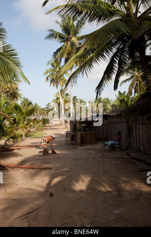 The Ewe village of Akosu, near Winneba, Ghana. - Stock Image
