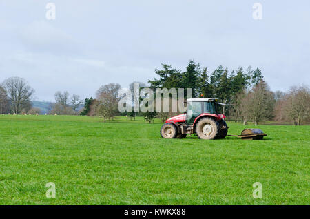 Farmer in Tractor using roller over grassland field. The practice of rolling grass fields. - Stock Image