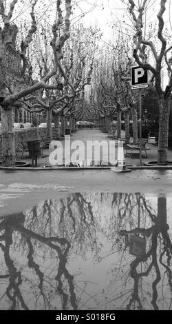 Puddle reflection - Stock Image