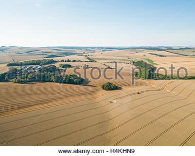 Harvest aerial farm landscape of combine harvester cutting summer wheat field crop with tractor trailer under blue sky - Stock Image